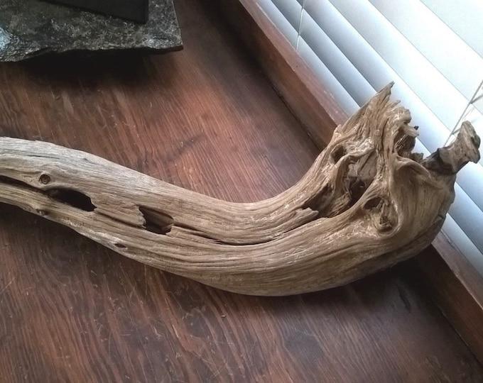 Driftwood Cedar Limb. Rustic Primitive Art Home Decor 552
