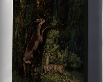 Canvas 16x24; Gustave Courbet Deer In The Forest