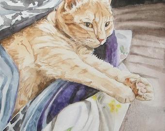 Custom Pet Portraits, favorite animals, original watercolor portrait pets to order, Red-headed cat