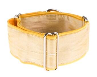 Martingale collar, martingale dog collar, 1,5 inch martingale collar, dog collar