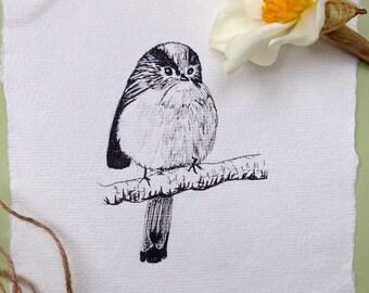 Long-tailed Tit, Original Ink Sketch