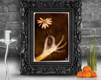 X-ray portrait hand holding a flower. Surreal fine art print        FRAMED x ray flowers sepia
