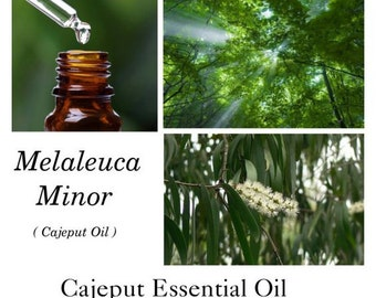 Cajeput Essential Oil, Cajeput Oil, Melaleuca Minor, 100% Pure Authentic Cajeput EO