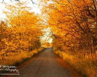 Fall Photography Autumn Scenery Photo Canvas Art block Christmas Gift for men women Milltown South Dakota Photography by Nicole Heitzman