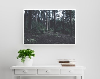 Wilderness Vintage and travel Photography. Nature and travel photographic print. Minimalist nature photography. Instant Download. 8.5x11.
