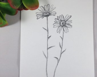 Daisy Drawing, Daisy Print, Botanical Art, Flower Drawing, Wall Art