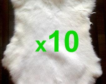 10 x White Rabbit Skin Fur Pelt Tanned for; crafts, fabric, LARP, dummy