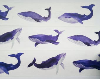 Design Washi tape whale sea Watercolour