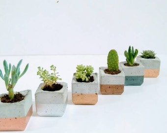 Copper Home Decor copper_02 Trio Of Metallic Enamel Dipped Mini Concrete Succulent Planters