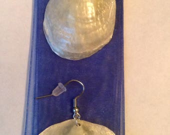 Seashell earrings 12