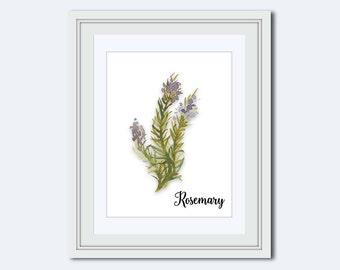 Rosemary print - Rosemary printable - Kitchen printable - herb print - art for kitchen - kitchen decor - kitchen wall art - Printable Art