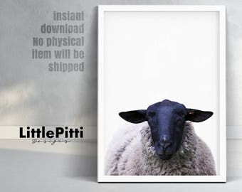 Sheep print, nursery farm animal wall art, sheep decor, sheep wall art, large poster, farm animal print, sheep poster, sheep nursery art