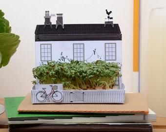 Mini growing kit gift, English village pub, cottage and shop