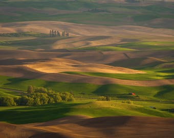 The Hills of the Palouse, Steptoe Butte State Park, Landscape Photography - Fine Art Print by Meleah Reardon