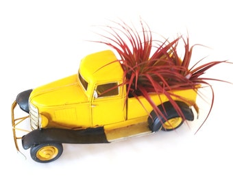 Vintage Metal Yellow Truck with Air Plants , Tillandsia , Great Gift , Home Decor , Office Decor
