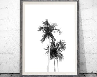 Palm Tree Print, Black and White Palm Trees, Tropical Wall Art, Californian Palm Tree Print, Modern Wall Prints, Instant Download