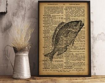 Gift for Fisherman, Fish art decor, Fish Wall Art, Nautical Wall Art fish print, Nautical print fishing decor (R26)