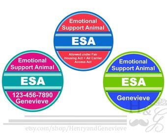 Service Dog Harness Etsy