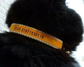 Personalised Reflective Elasticated Safety Cat Collar with Warning bell to help protect the wildlife in colours Silver and Yellow Free P&P