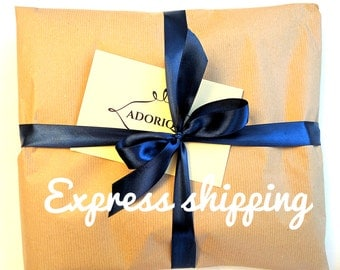 Express shipping / fast delivery / door-to-door delivery