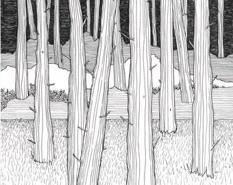 Tree art print, Wall art, black and white art, art print, black and white prints, line drawing, pine trees, tree picture, trees, interior