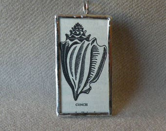 Conch Shell - Handmade Soldered Glass Pendant with B&W Vintage Dictionary Illustration