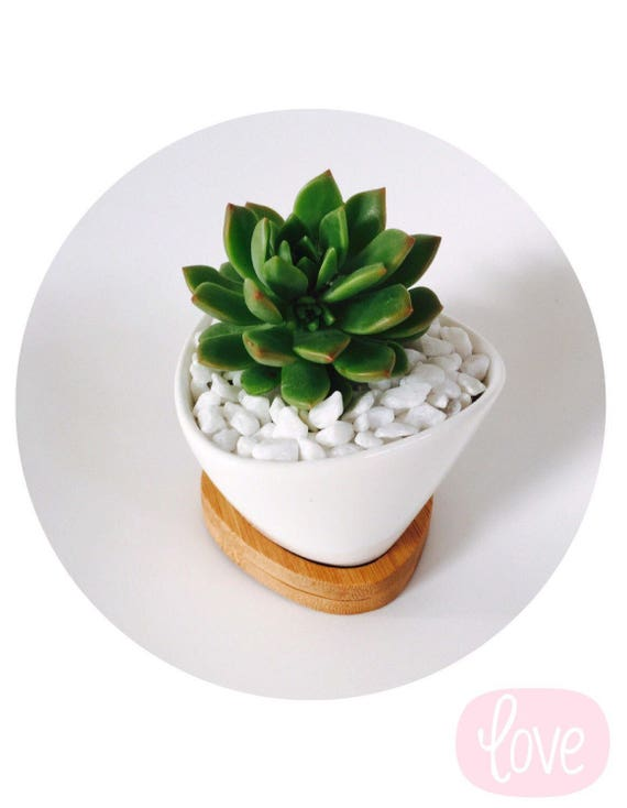Medium Oval Ceramic Pot Wedding Favour