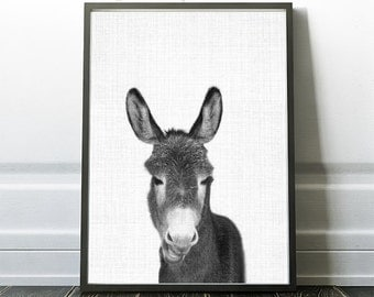 Donkey Print, Donkey Wall Art, Nursery Photo, Donkey Kids Art, Donkey Decor, Farm Animal Photography, Farm Print, Black And White Donkey,