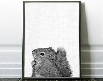 Woodland Squirrel , Animal nursery print, Squirrel Print, Black and White Photo, Kids Poster Print, Nursery, Instant Download, Animal Art