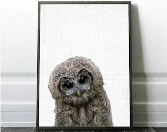 Owl Print, Owl  Decor, Owl Photography, Owl Photo, Large Printable Poster, Owl Poster, Owl Download, Owl Wall Art, Modern Printable Art, Owl