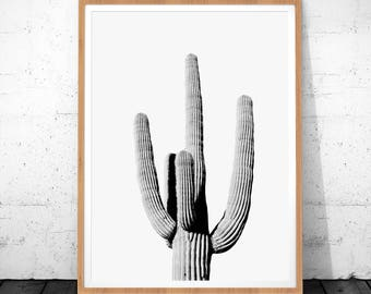 Cactus Printable, Cactus Art, Cactus Print, Cactus Poster, Black And White Print, Desert Print, Desert Art, Cacti Print, Cactus Photography