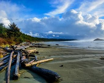 Landscape Photography Driftwood beach photography fine art print