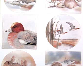 A4 - winter animals collage sheet