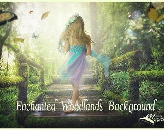 Enchanted Woodlands Background   Digital Background  Woodland Background   Forest Digital Backdrop   Spring Digital Backdrop