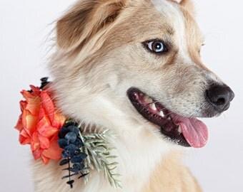 COURTNEY- Wedding Dog Collar, Dog Flower Crown, Flowerdog, Coral and Navy Flowers, Boho Wedding,Beach Wedding Flowers,Rustic Wedding Flowers