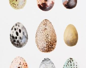 Spotted Eggs Original Watercolor Painting // Original Art