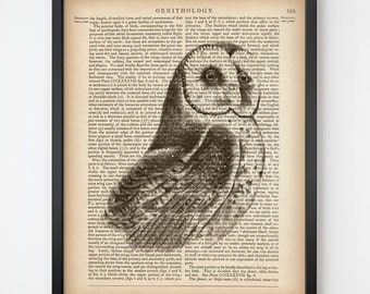 Dictionary wall art, 8x10 print, 11x14 print, Owl print vintage, Owl art, Download art, Instant print, Bird print, Dictionary bird print