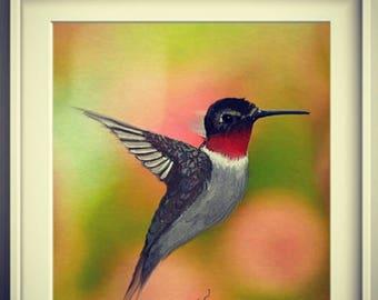 Hummingbird Painting Glicee Print