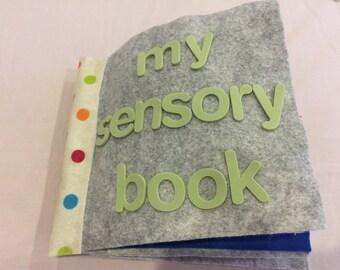 Baby's quiet sensory book
