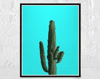 Turquoise Cactus Print, Succulent Print, Botanical Art, Cactus Art, Modern Wall Decor, Cactus Poster, Cactus Photography, Cacti Wall Art