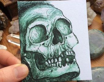 Small Skull Drawing Art Print
