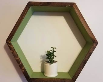 Green Hexagon Shelf