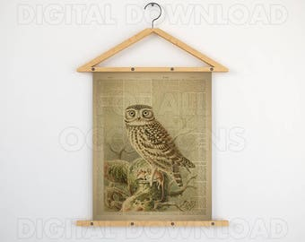 Art prints vintage style, Dictionary, 8x10 artwork, Printable, Dictionary bird print, Bird print, Antique owl art, Vintage little owl print