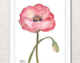 Pink Spring Poppy Flower Painting - Watercolor Archival Art Print