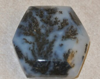 Hexagon Dendritic Opal Cabachon