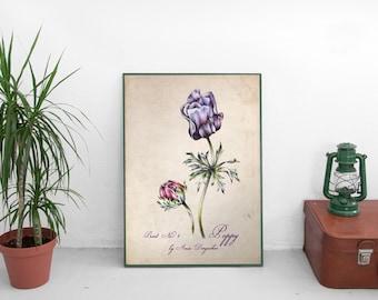 Flower decor, Poppy art, Home decor, Poppy print, Vintage print, Wall decor, Poppy poster, Vintage decor, Romantic decor, Wall flower decor