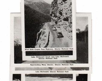 "Black Hills, South Dakota Park Black and White 31/2"" X 2 1/2"" Sovenior Pictures"