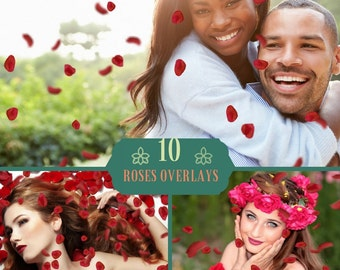 10 Falling Petals Overlays, Photoshop Overlays, Valentine Overlays, Roses overlays, Red Rose Petals,  Fluttering Petals, Fantasy Png file