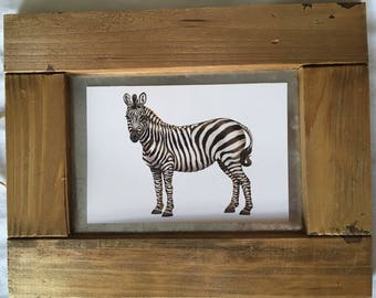 Framed Zebra Wall Hanging