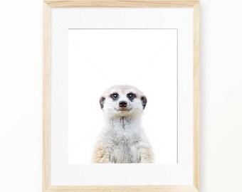 Meerkat Print, Meerkat Wall Art, Nursery Animal, Woodlands Nursery Decor, Meerkat Printable Poster, Meerkat Digital Print Digital Download